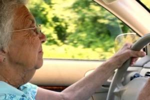 senior-driver-michigan